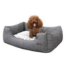 divani per cani di taglia piccola
