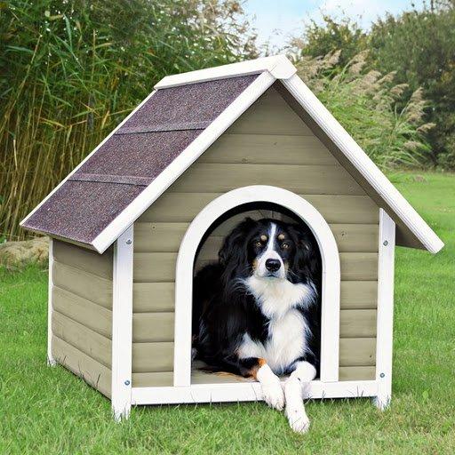cuccia per cani da giardino